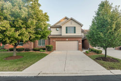 Photo of 7452 E Plank Trail Court, Frankfort, IL 60423 (MLS # 10768751)