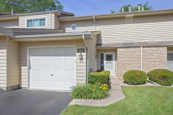 Photo of 313 Arbor Hill Court, Unit Number 0, New Lenox, IL 60451 (MLS # 10769116)