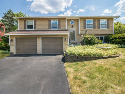Photo of 1316 Oconto Court, Naperville, IL 60564 (MLS # 10769897)