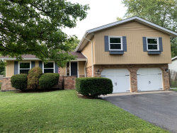 Photo of 315 Central Road, New Lenox, IL 60451 (MLS # 10770716)