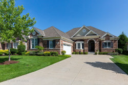 Photo of 8 Chaco Court, South Barrington, IL 60010 (MLS # 10773939)