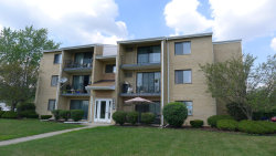 Photo of 9960 Franchesca Court, Unit Number 3D, Orland Park, IL 60462 (MLS # 10773991)