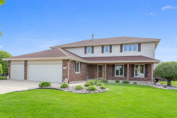 Photo of 11901 S Pinecreek Drive, Orland Park, IL 60467 (MLS # 10775146)