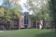 Photo of 1041 N Mill Street, Unit Number 102, Naperville, IL 60563 (MLS # 10778673)