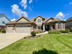 Photo of 2096 Water Chase Drive, New Lenox, IL 60451 (MLS # 10778848)