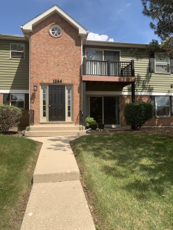 Photo of 1364 Mc Dowell Road, Unit Number 102, Naperville, IL 60563 (MLS # 10780344)