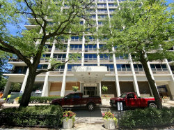 Photo of 88 W Schiller Street, Unit Number 509, Chicago, IL 60610 (MLS # 10782834)