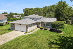 Photo of 25639 S Middlepoint Avenue, Monee, IL 60449 (MLS # 10800046)