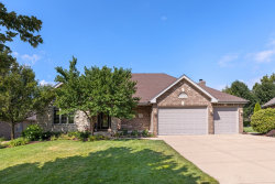 Photo of 19900 Golden Oak Lane, Mokena, IL 60448 (MLS # 10808343)