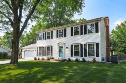 Photo of 1039 Knoll Drive, Naperville, IL 60565 (MLS # 10809823)