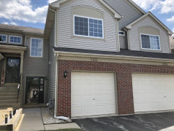 Photo of 249 Nicole Drive, Unit Number C, South Elgin, IL 60177 (MLS # 10810654)