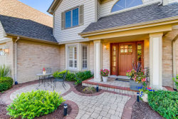 Photo of 13719 Wilrose Court, Orland Park, IL 60467 (MLS # 10813572)