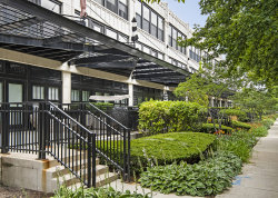 Photo of 1070 W 15th Street, Unit Number 210, Chicago, IL 60608 (MLS # 10814560)
