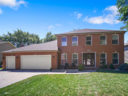 Photo of 123 Rieser Circle, Naperville, IL 60565 (MLS # 10817684)
