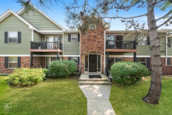 Photo of 1577 Raymond Drive, Unit Number 104, Naperville, IL 60563 (MLS # 10830380)