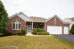 Photo of 24852 Thornberry Drive, Plainfield, IL 60544 (MLS # 10843201)