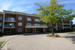 Photo of 124 Day Street, Unit Number 211, Bloomingdale, IL 60108 (MLS # 10846541)