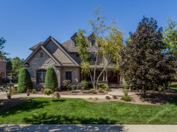 Photo of 11884 Coquille Drive, Frankfort, IL 60423 (MLS # 10850320)