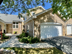Photo of 11408 Lakebrook Court, Orland Park, IL 60467 (MLS # 10852924)