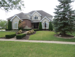 Photo of 21314 Ginger Lane, Frankfort, IL 60423 (MLS # 10853853)