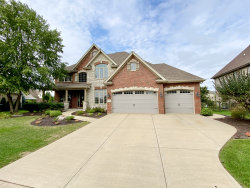 Photo of 12532 Chiszar Drive, Mokena, IL 60448 (MLS # 10854537)