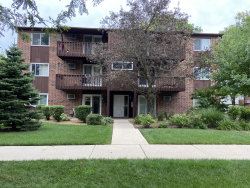 Photo of 662 Daisy Lane, Unit Number 110, Roselle, IL 60172 (MLS # 10854753)