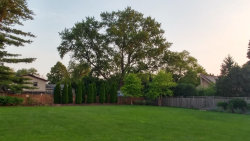 Tiny photo for 759 Ridgeview Street, Downers Grove, IL 60516 (MLS # 10854993)