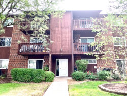 Photo of 686 Daisy Lane, Unit Number 115, Roselle, IL 60172 (MLS # 10859460)