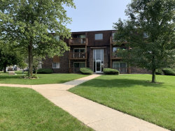 Photo of 19330 Wolf Road, Unit Number 8, Mokena, IL 60448 (MLS # 10859897)