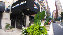 Photo of 600 S Dearborn Street, Unit Number 502, Chicago, IL 60605 (MLS # 10873596)