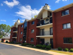 Photo of 18245 66th Court, Unit Number 2D, Tinley Park, IL 60477 (MLS # 10876858)