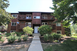 Photo of 669 Daisy Lane, Unit Number 103, Roselle, IL 60172 (MLS # 10877884)