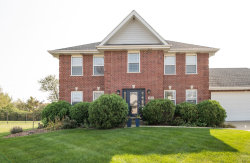 Photo of 21470 English Circle Drive, Frankfort, IL 60423 (MLS # 10879583)