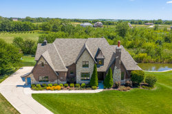 Photo of 25539 S Charlevoix Place, Monee, IL 60449 (MLS # 10881533)