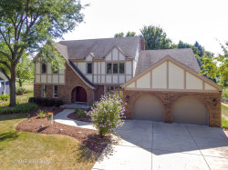Photo of 1427 Druid Hills Court, Naperville, IL 60563 (MLS # 10886345)