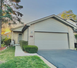 Photo of 16712 Sheridans Trail, Orland Park, IL 60467 (MLS # 10917627)