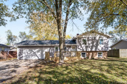 Photo of 2243 Countryside Drive, Montgomery, IL 60538 (MLS # 10920382)