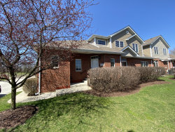 Photo of 589 Prairie Crossing Drive, New Lenox, IL 60451 (MLS # 10927257)