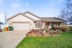 Photo of 1831 Grand Prairie Drive, New Lenox, IL 60451 (MLS # 10936349)