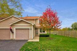 Photo of 281 E Forest Knoll Drive, Palatine, IL 60074 (MLS # 10939539)