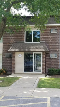 Photo of 1097 Miller Lane, Unit Number 207, Buffalo Grove, IL 60089 (MLS # 10939830)