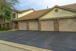 Photo of 4221 N Pheasant Trail Court, Unit Number 5, Arlington Heights, IL 60004 (MLS # 10939937)