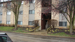 Photo of 2352 South Street, Unit Number E, Elgin, IL 60123 (MLS # 10940838)
