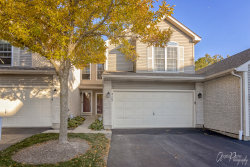 Photo of 3105 River Birch Court, McHenry, IL 60051 (MLS # 10941255)