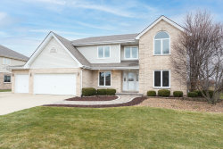 Photo of 1035 Grand Mesa Avenue, New Lenox, IL 60451 (MLS # 10942283)