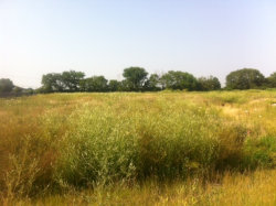 Photo of LOT 1 Forrest Drive, MAZON, IL 60444 (MLS # 09488424)