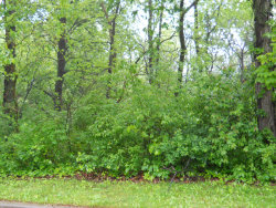 Photo of Lot 14 Arbor Street, OGLESBY, IL 61348 (MLS # 09751126)