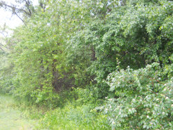 Photo of Lot 13 Oakwood Estates 3rd Addition, OGLESBY, IL 61348 (MLS # 09751588)