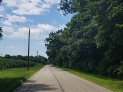 Photo of 0000 S Kelly Road, WILMINGTON, IL 60481 (MLS # 10027687)
