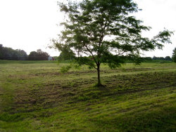 Photo of Lot 59 Madeline Drive, YORKVILLE, IL 60560 (MLS # 10261742)